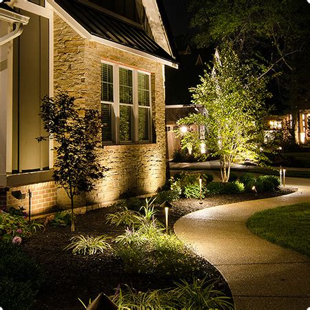 professional landscape lighting system earth  woods