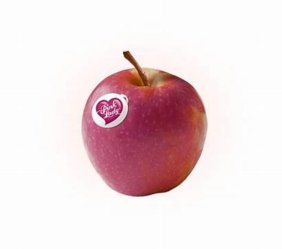 Apples Apple Pink Lady Fruit Clipart Honey