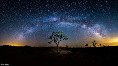Picture Of The Milky Way Over Joshua Tree National Park