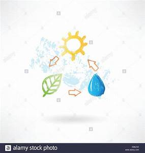 Water Cycle Diagram Stock Photos  U0026 Water Cycle Diagram