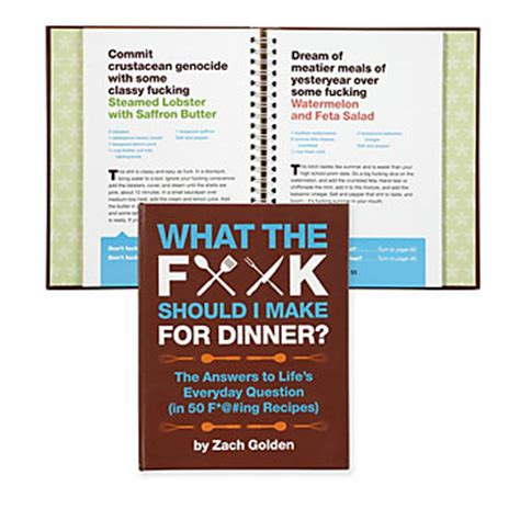 xzibit hit the floor what should i cook for dinner 28 images what the f k should i make for dinner books