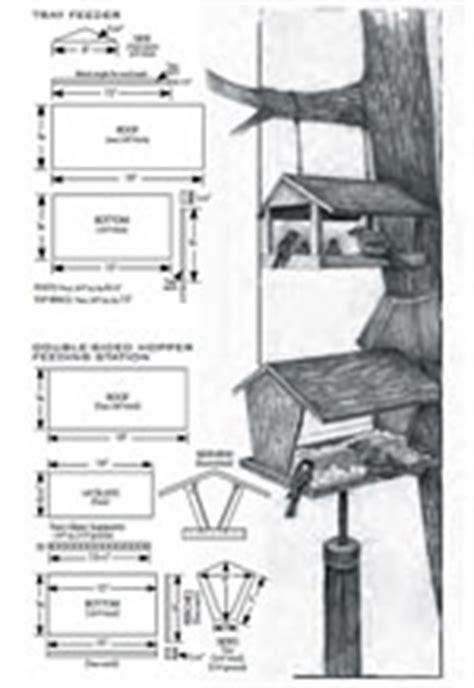 plans  build  cardinal bird feeder plans  plans