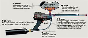 Best Paintball Gun For Self Defence