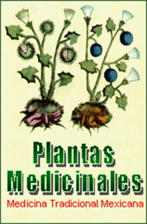 programa del diplomado en herbolaria  medicina tradicional mexicana curso diplomado de