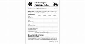 Horse And Pony Project Worksheet  4
