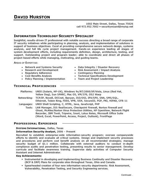 cv samples  information technology