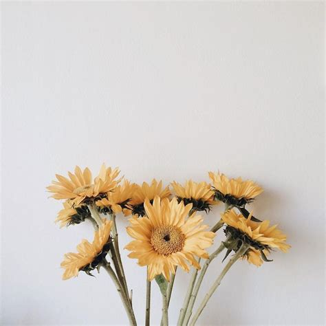 Pinterest Whysoperfectt Massage Therapy Flowers