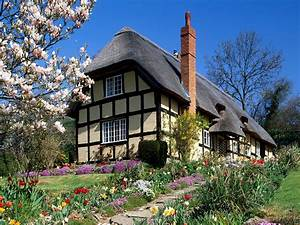 Country House with Bloomed Magnolia HD Wallpaper ~ The ...