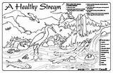 Coloring Stream Water Pages Sheets Colouring Drawing Watershed Healthy Sheet Streamkeepers Sream Placemat Drawings Placemats 11x17 Getdrawings Getcolorings 350px 93kb sketch template