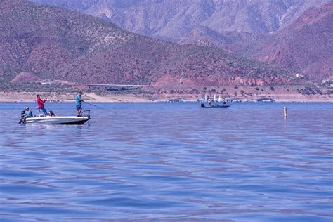 Roosevelt Lake Az Fishing Boat Rentals by Roosevelt Lake Arizona Fishing Bass Carp Catfish