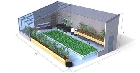 Energy-Efficient Aquaponics Greenhouses