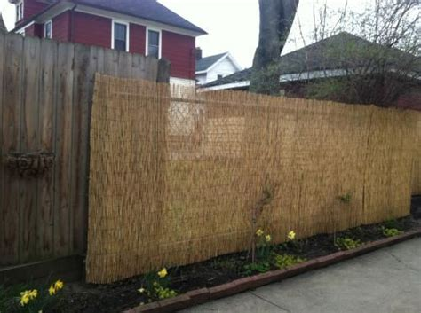 Backyard Xscapes 6 Ft H X 16 Ft L Reed Fencing Reed