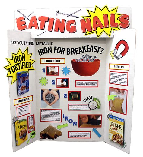 science fair project  importance  iron