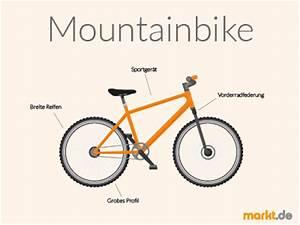 Welches Bett Ist Das Richtige Für Mich : welches mountainbike ist das richtige f r mich ~ Michelbontemps.com Haus und Dekorationen