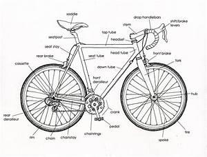 Bicycle Diagram