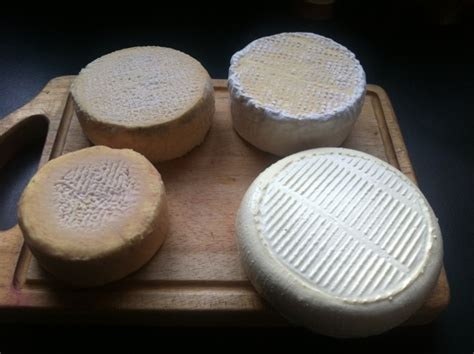 comment faire du fromage maison affinage