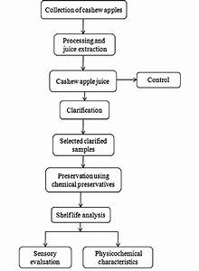 Flowchart Representing Clarification And Preservation Of