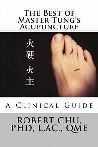 Acupuncture Guide Pdf