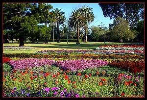 Toowoomba flower festival, a photo from Queensland, East