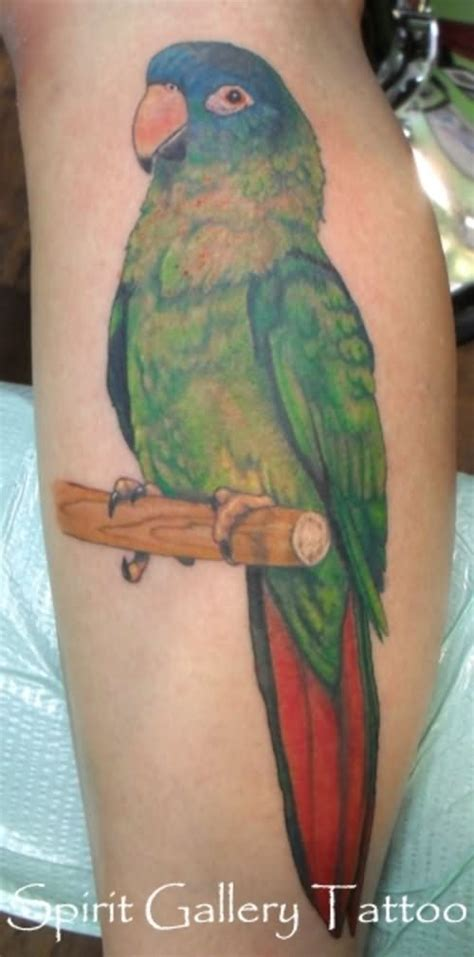 cool parrot tattoos