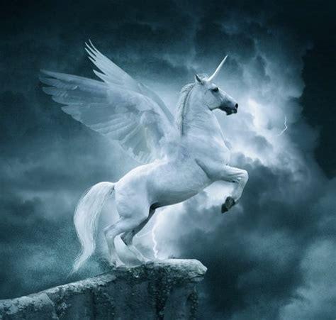 pin de katherine heylen en unicornios  pegasos intj