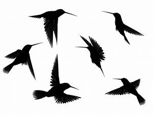 Stock - Flying black Birds - Silhouette 3 by Jassy2012 on ...