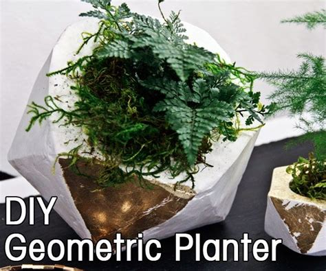 diy geometric concrete planter steven and chris