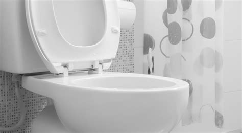 Commode Bidet Combination by Does Diabetes Cause Toilet Mold Diabetic Connect