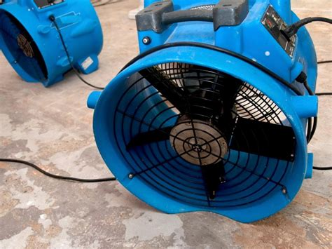 floor drying fan rental 8 tips to prevent mold under water damaged carpets