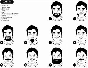 Learn By Diagram  Learn About Facial Hair Styling
