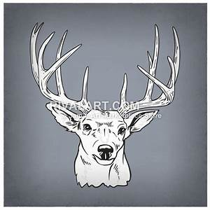 Black White Deer Head Buck Antlers 12 Point Graphic