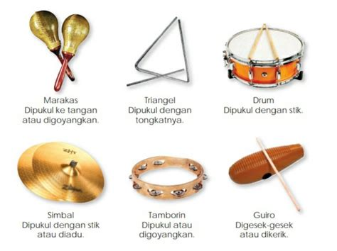 Kumpulan alat musik ritmis tradisional dan alat musik ritmis modern lengkap dengan nama, penjelasan, asal, gambar, dan cara untuk menyamankan saat memainkan, letakkan satu marakas di tangan kanan dan satu lagi di tangan kiri. 15 Contoh Alat Musik Ritmis dan Penjelasannya - Guratgarut
