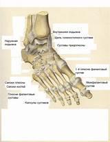 Мазь от боли в суставе коленном суставе