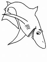 Shark Coloring Outline Pages Popular Panda sketch template