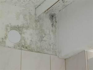 Schimmelpilz Im Badezimmer : schimmel im badezimmer was tun das beste aus wohndesign und m bel inspiration ~ Sanjose-hotels-ca.com Haus und Dekorationen