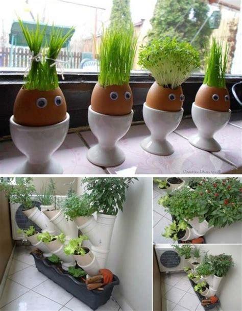 plantes aromatiques cuisine avoir des plantes aromatiques dans la cuisine cultivées