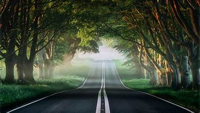 Forest 4k Road Misty Wallpapers