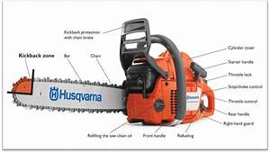 The Complete Chainsaw Buying Guide  U2013 Powertoolbuzz