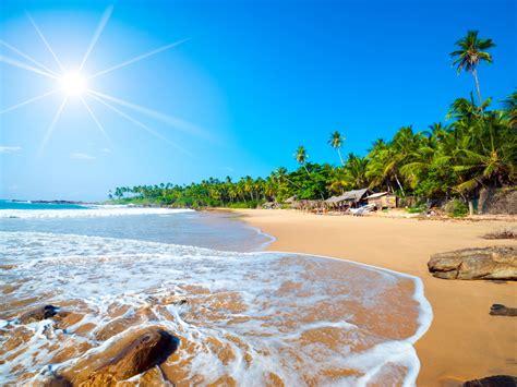 lanka sri beach tropical exotic ocean waves hd forest sandy palm jaffna trees ndian wallpapers13