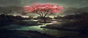 Flowering tree on the dark nature wallpapers and images ...