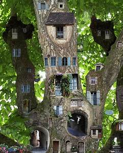 Amazing tree of fairy houses Wonder if this would work in