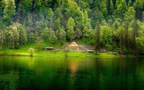 green lake wooden house pine forest meadow hd desktop