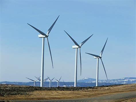 energia de biomassa pensamento verde