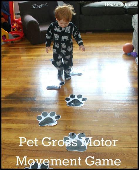 1000 images about pet theme for preschool on 448 | 4e1ebc8e72140e4f0cccdd23e49194cb