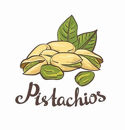 Pistachio Clip Nuts Illustrations Similar