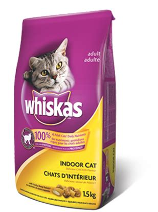 food names for cats roger biduk pet food brands and treats to avoid