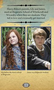 Reasons Why James Potter Didn't Really Love Lily Evans