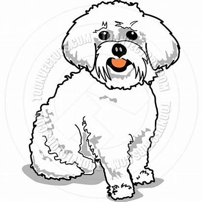 Maltese Clipart Dog Coloring Pages Dogs Glass