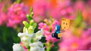 Photo - cute Da... Cute Backgrounds