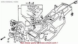 Honda Gl1100 Goldwing Aspencade 1983  D  Usa Wire Harness